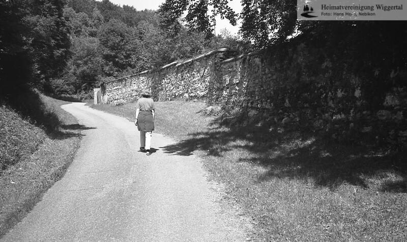 Hirtzel Juli 96