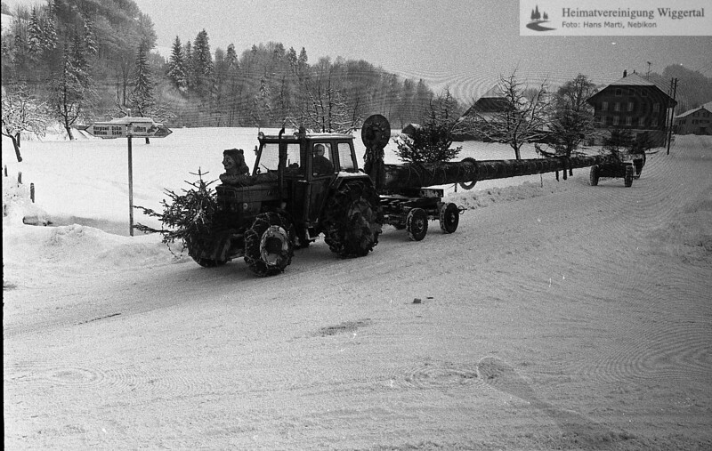 Wiggertal 1984/ Tanneschleipfette 1985