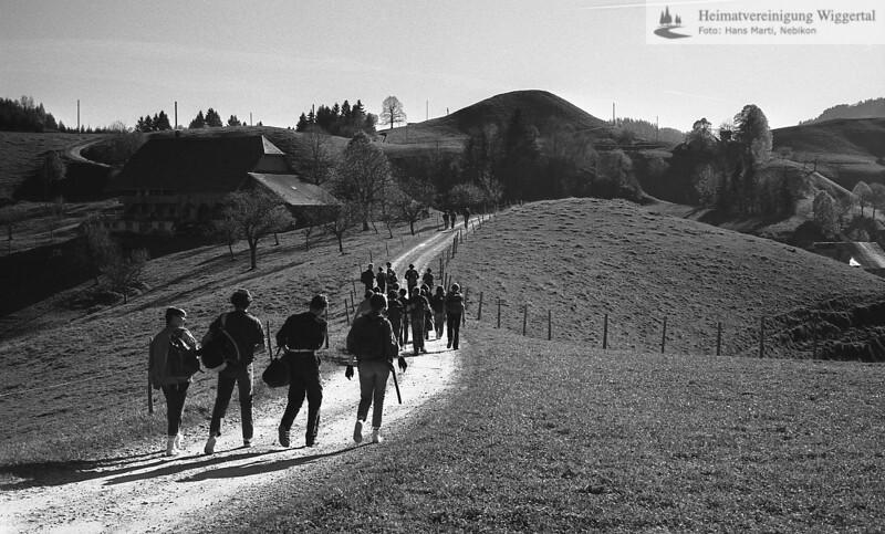 Wiggertal 1984/ Napfgebiet