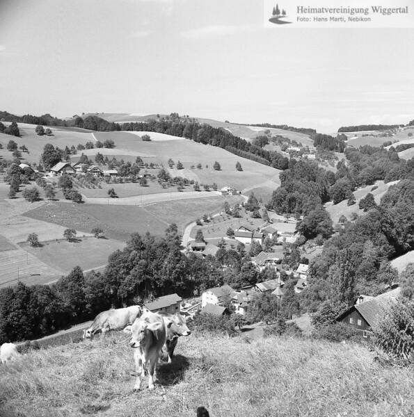 #130037   Bildmitte; Dorf; Hintergrund links; Unterwergigen; PBA
