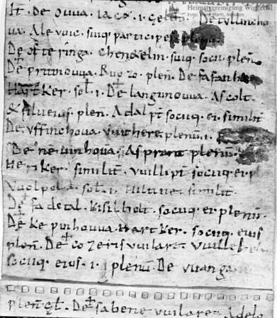 #130088   Urkunde; mit der Nennung von; nevinhova; fja