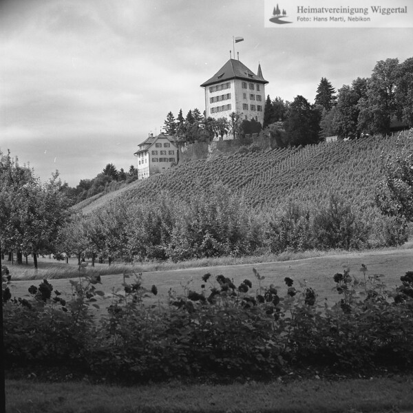 #140200 | Schloss Heidegg; s.Heidegg; fja