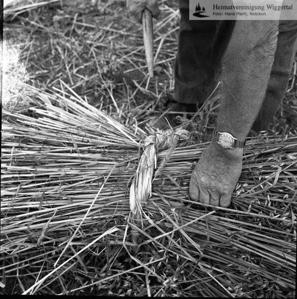 #150091 | Garbenbinden mit Schaubband (eingedrehte Getreidehalme); Wurden im Winter nach dem Flegeln für den nächsten Sommer bereit gemacht; PBA; fja