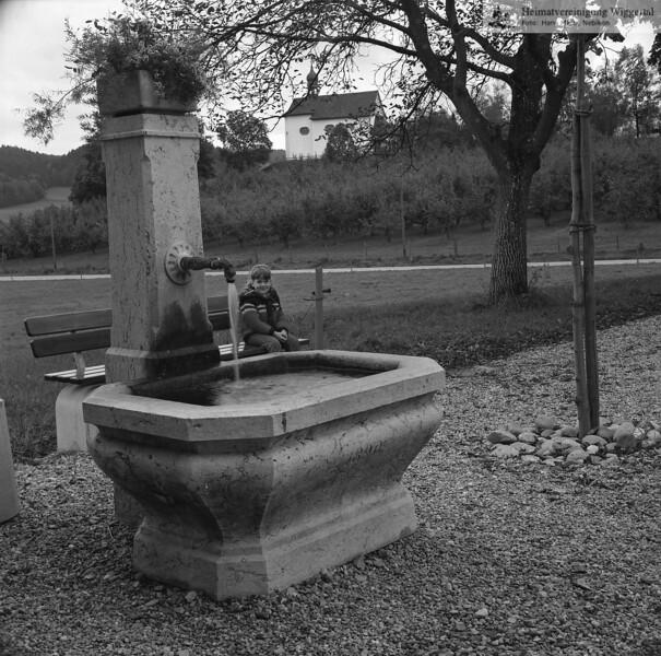 #150201 | Burgrain; Hofbrunnen; Hintergrund; Bläsichäppali; fja