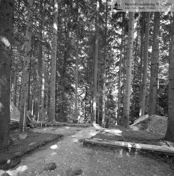 #160627 | Burgstelle Salbüel; Ausgrabung 1982; fwk