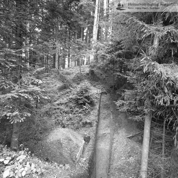 #160617 | Burgstelle Salbüel; Ausgrabung 1982; Schnitt durch den Burggraben; fwk