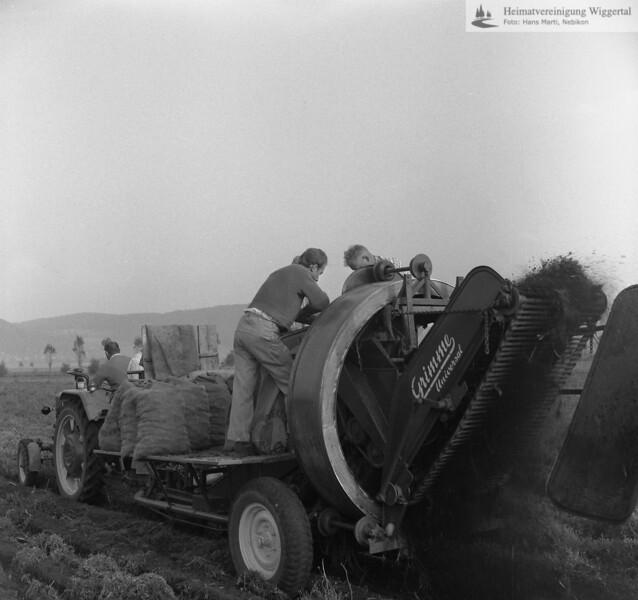 #170025 | Ackerbau; Kartoffelernte mit der Maschine; fja