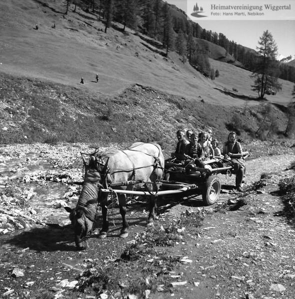 #170258 | Berglandwirtschaft; wo?; fja