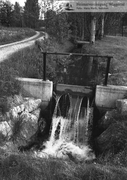 #170902 | Brütsche zum Wässern, unterhalb der Flue; PBA; fja