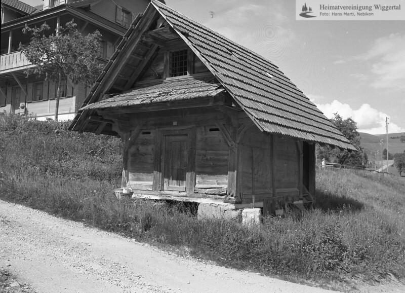 #170896 | Haueten-Hornstrasse; fib
