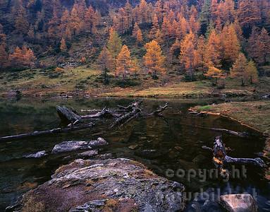 GF-1015 - Herbststimmung am Unteren Lanschitzsee