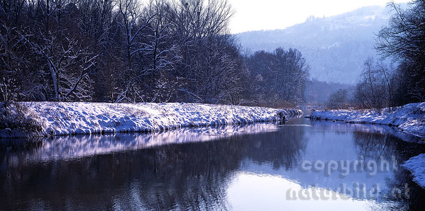 PF-777 - Winter am Alten Rhein Fluss