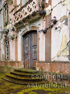 Alte Kirche, Eingang, verfallen, durch das Erdbeben zerstört, Blumen wachsen in der Fassade, Rhiberina, Faial, Azoren, Portugal