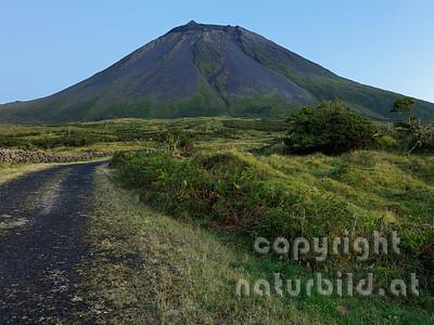 Straße zum Vulkan, Insel Pico, Azoren, Portugal,