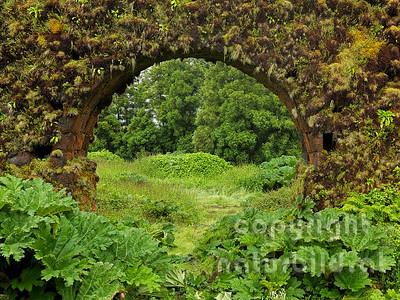 Blick durch einen Durchgang, verwachsener Aquadukt, Insel Sao Miguel, Azoren, Portugal,
