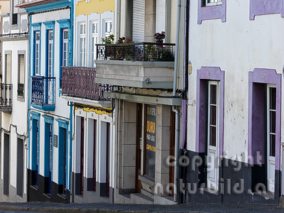 Bunte Häuserfassaden, im Zentrum, Angra do Heroismo, Insel Terceira, Azoren, Portugal,