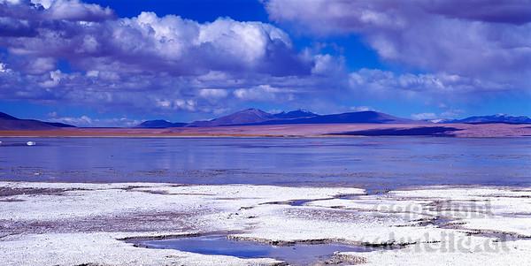 PF-798 - Boraxlagune im Altiplano