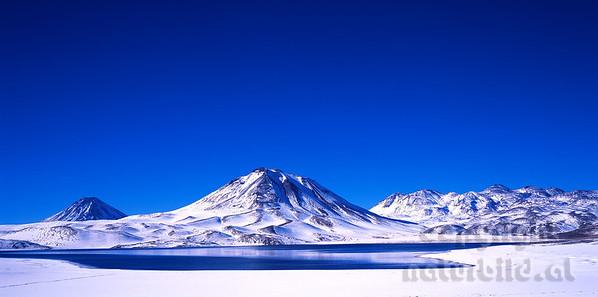 PF-803 - Laguna Miscanti im Schnee - 2