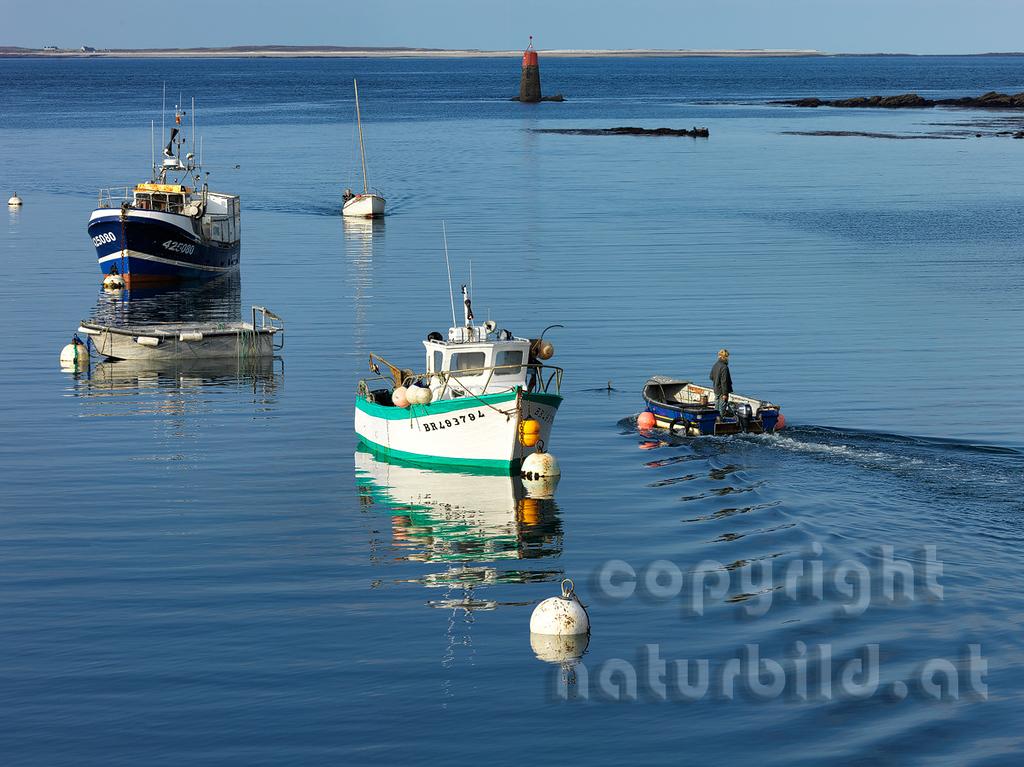 16B-03-102 - Boote im Hafen von Le-Concquet