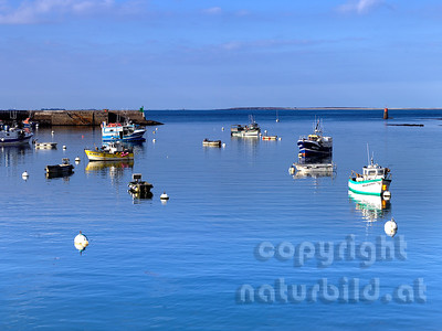 16B-03-98 - Boote im Hafen Le-Concquet