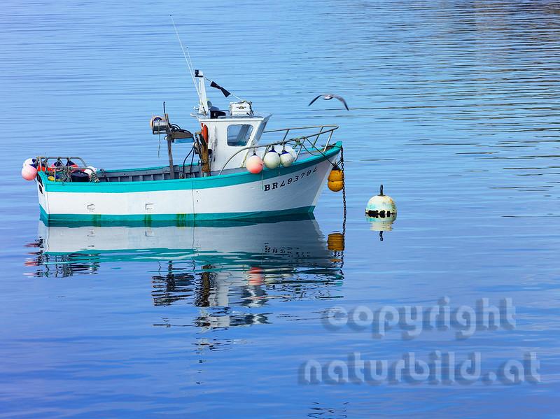 16B-03-108 - Fischkutter im Hafen