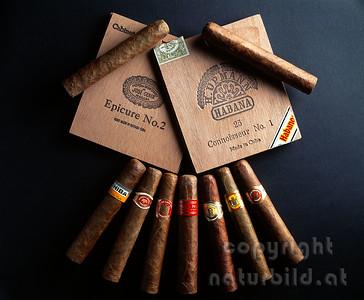 MF-302 - Havanna Robusto Zigarren