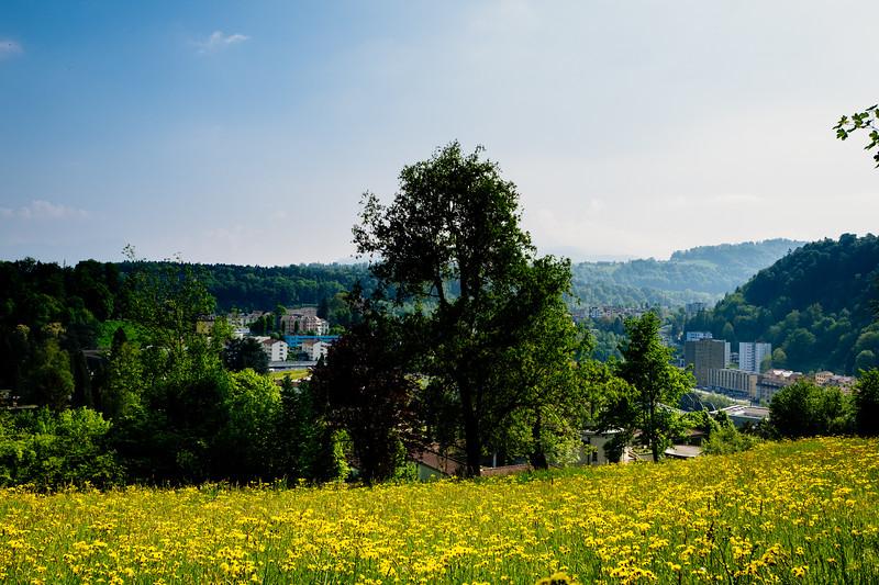 Friedental 2018-2-36.jpg