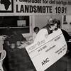Fellesrådet for det sørlige Afrikas landsmøte 1991