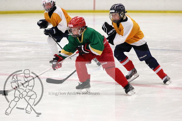 Sweden Elit Hockey Camp 2015
