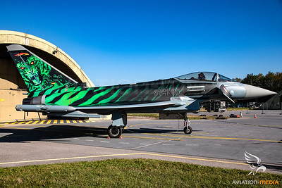 Luftwaffe Eurofighter 31+00