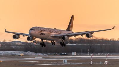 Lufthansa / Airbus A340-313 / D-AIFE / Star Alliance Livery