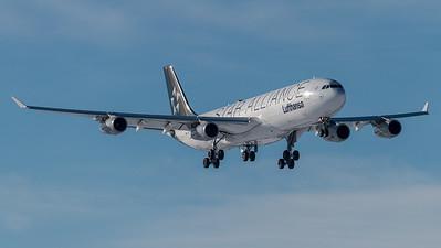 Lufthansa / Airbus A340-313 / D-AIGV / Star Alliance Livery