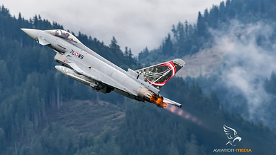 Austrian Air Force 1st Squadron / Eurofighter Typhoon / 7L WB / Austrian Typhoons Livery
