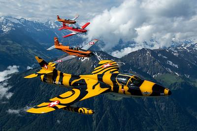 """Fliegermuseum / Hawker Hunter TMk68 / HB-RVV / """"Tiger"""""""