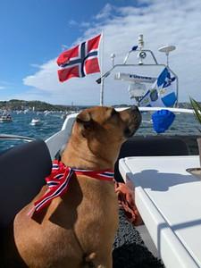Foto: Elin Margrethe Dyrøy