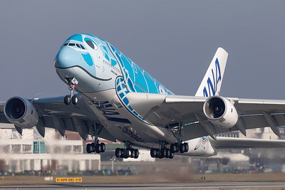 All Nippon Airways (ANA) / Airbus A380-800 / F-WWSH