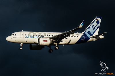 Airbus' first A319neo (Toulouse)