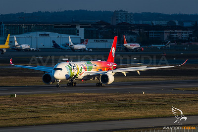"""Sichuan Airlines """"Panda"""" (Toulouse)"""
