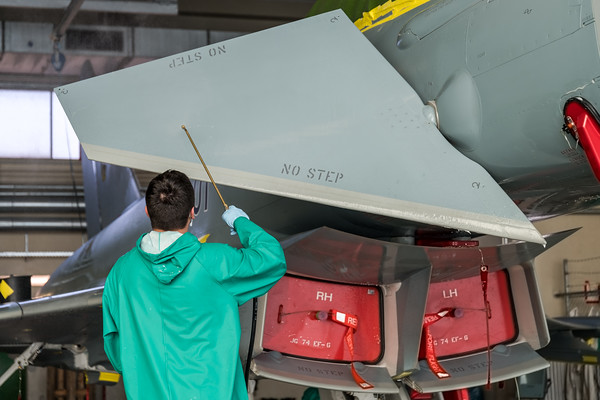 Washing the future Tiger Eurofighter 31+01