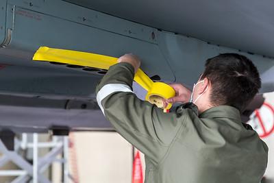 Masking the future Tiger Eurofighter 31+01