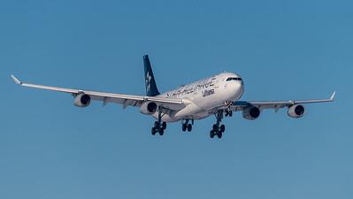 Lufthansa / Airbus A340-313X / D-AIGN / Star Alliance Livery