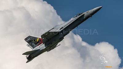 Swiss Air Force / McDonnell Douglas F/A-18C Hornet / J-5017 / Hawk Livery