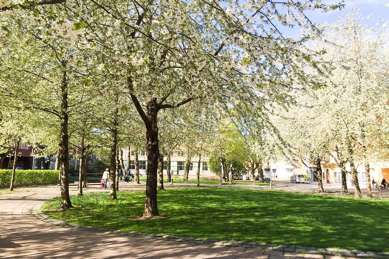 På Kungsängstorg, Uppsala