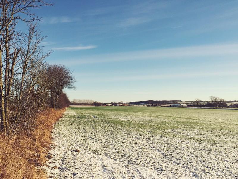 Längs Hardebergaspåret, Strax Utanför Lund