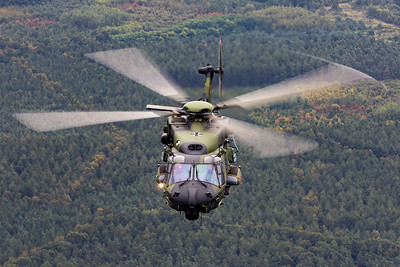 Germany - Army | NH Industries NH-90TTH | 79+19