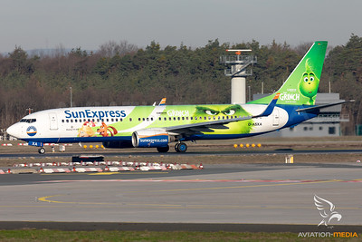 """Grinch"" Special Livery"