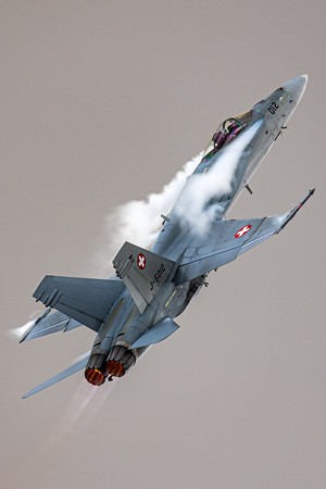 Swiss Air Force / F/A-18C Hornet / J-5012
