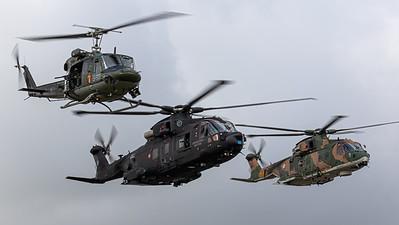 Italy Air Force / AgustaWestland HH-101A Caesar / MM81872
