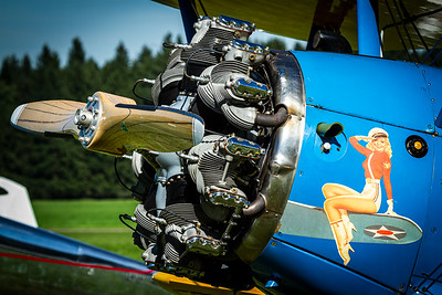 Private / Boeing PT-17 Stearman / N55097