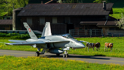 Swiss Air Force / F/A-18C Hornet / J-5010